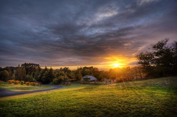 Colley Creek Farms